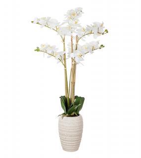 Орхидея Х 6 В Кашпо 89См Белый